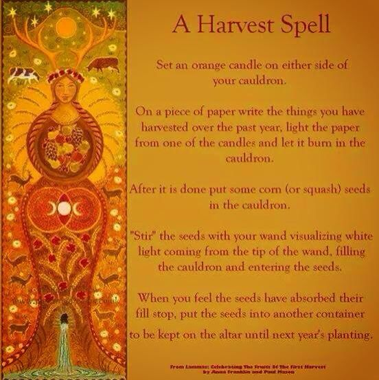 3f4f31b4de10d0647bc84c96387ca061--magick-spells-book-of-shadows.jpg